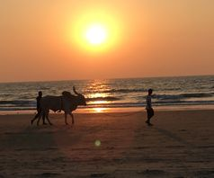 Goa by sunset